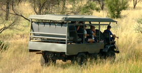 Game Viewing & Game Drives